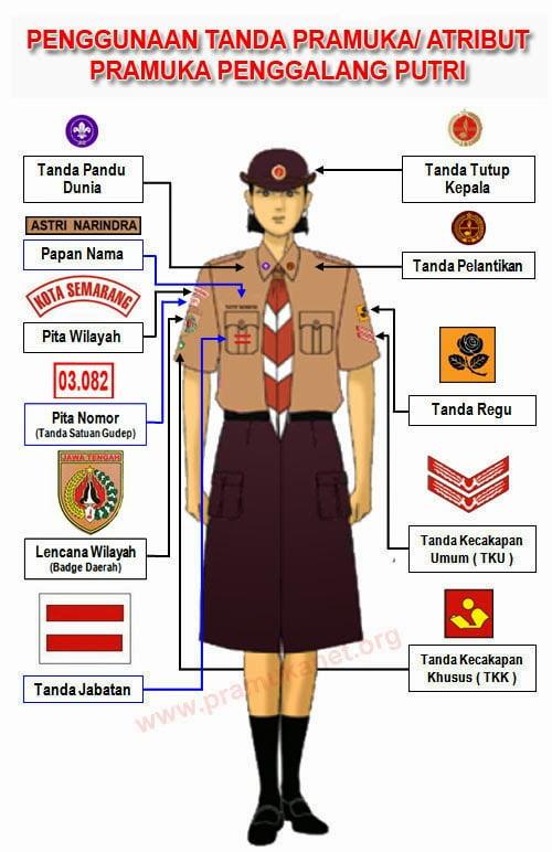 Desain Baju PDL Pramuka Penggalang Putri